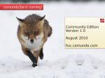 slides to show camunda fox in action